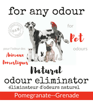 forr any odour pets